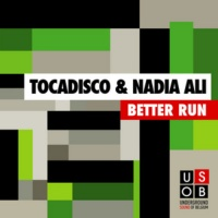 Better Run (Inpetto Dub Mix)
