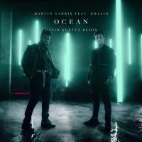 Ocean (David Guetta Remix)