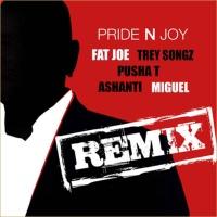 Pride & Joy (Remix)