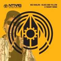 Black And Yellow (K Theory Remix)