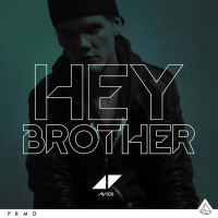 Hey Brother (Acoustic Remix)